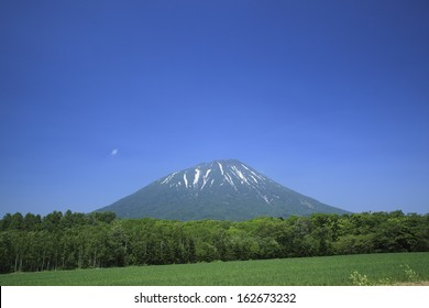 Mt. Yotei and a field