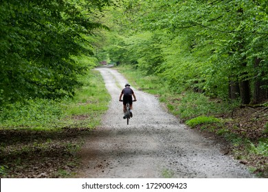 MTB Cyclist on a beautiful dirt path in a green trees forrest in Poland (Europe) on a nice and sunny spring summer day