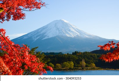 Mt.Fuji in autumn at Lake kawaguchiko in japan.