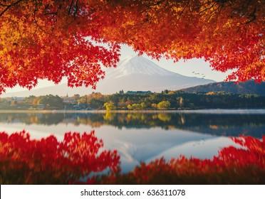 Mt.Fuji in autumn on sunrise at lake Kawaguchiko,