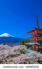 Mt.Fuji and cherry tree