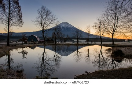 Mt.Fuji Sunrise .at Fumotoppara campground in the morning sunrise. Autumn season in japan. Maple japan and mount fuji on blue sky.