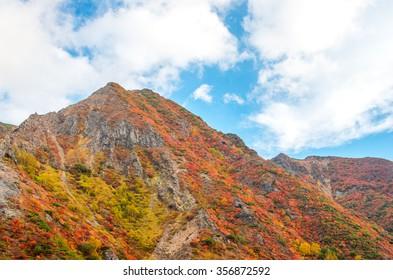 Mt.Nasu,tochigi,tourism of japan autumn