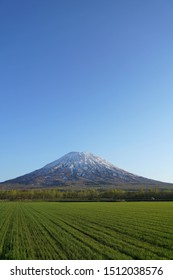 Mt.Yotei-zan at early spring and field.
