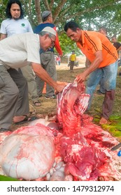 Muadzam Shah, Malaysia – September 1st, 2017 : Unidentified Malay Muslims help each other in halal slaughtering part of a cow during Eid Al-Adha Al Mubarak, the Feast of Sacrifice or Qurban.