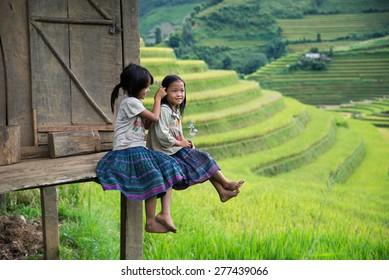 MUCANGCHAI, VIETNAM, SEPT 20: H'mong ethnic minority children on September 20, 2014 in Mucangchai, Vietnam. H'mong is the 8th largest ethnic group in Vietnam.