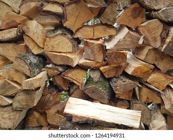 So much firewood for the cold winter
