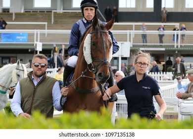 Too Much Too Soon ridden by Harry Skelton leaves the Parade Ring at Market Rasen Races : Market Rasen Racecourse, Lincs, UK : 11 May 2018 : Pic Mick Atkins