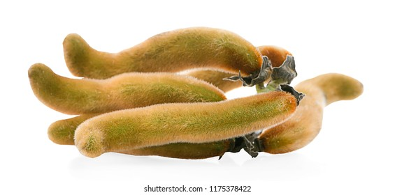 Mucuna pruriens isolated on white background