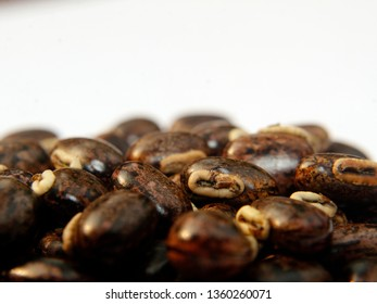 Mucuna pruriens seeds, a tropical legume also known as velvet bean.Also known as cowage, cowitch, lacuna bean, and Lyon bean.The plant is notorious for the extreme itchiness it produces on contact.