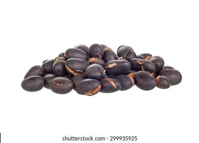 Mucuna pruriens, a tropical legume also known as velvet bean