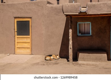 Mud adobe pueblo building in American southwest with new wooden door and dog asleep outside - dramatic shadows and turquoise window