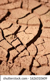 Mud cracking is a process commonly found in hot, dry climates in regions where a clayey soil has been recently saturated with water such as intertidal regions or deserts after a rainfall