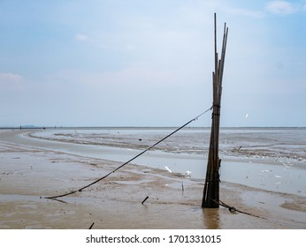 Mud plains exposed at low tide in Gulf of Thailand, on the coast of Chachoengsao Province Thailand. Dredged canal for boats to navigate the plains visible. Egrets looking for food in the mud.
