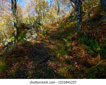 A muddy footpath winds up a hillside from Froggat Woods to Curbar Edge in the Derbyshire Peak district