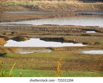 muddy lake