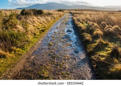 Muddy path in a moor in rural Scotland (UK)