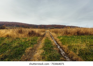 A muddy, primitive country dirt road that appears less traveled disappears into the horizon.