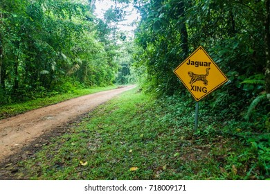 Muddy road in a jungle leading to Cockscomb Basin Wildlife Sanctuary, Belize. Sign jaguar xing (crossing).
