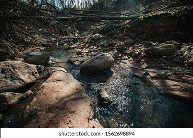 a muddy shallow ravine, overgrown with fallen trees and bushes on a spring day, at the bottom of the sand and earth flows a shallow rapid stream creating a route for Hiking