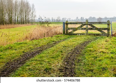 Muddy wheel tracks to a closed gate in a Dutch polder landscape on a cloudy day in the winter season.