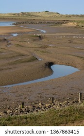 Mudlflats with seagulls at low tide on the Burn Estuary with distant sea and space for text. Vertical orientation.