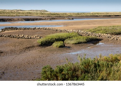 Mudlflats with seagulls at low tide on the Burn Estuary with distant sea and space for text.