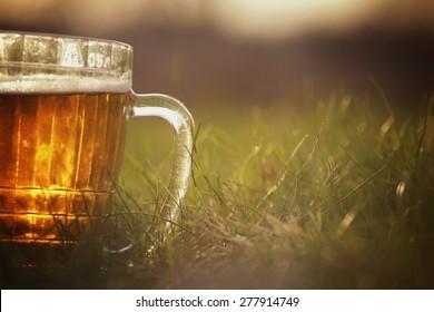 mug of beer on the grass