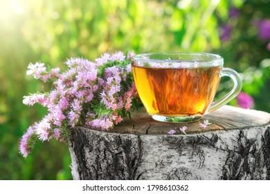 Mug of healthy herbal tea with hyssop medicinal herb outdoors.
