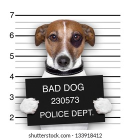 mugshot of  wanted dog holding a banner