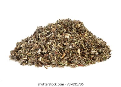Mugwort leaf herb used in alternative and chinese herbal medicine to stimulate gastric juices and bile secretion, as a liver tonic and sedative on white background. Artemesia vulgaris.