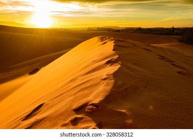 Mui Ne Red Whie Sand Dune in Vietnam