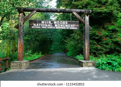 Woods Images, Stock Photos & Vectors | Shutterstock