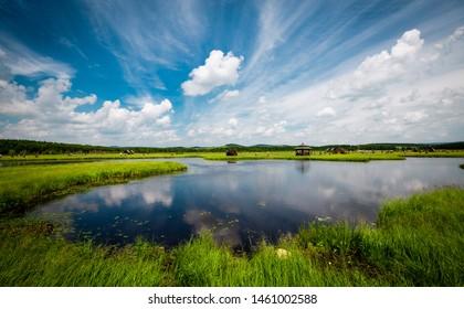 七星湖湿地