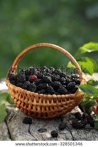 taille 40 73510 4b534 Mulberries Blackberry Basket Stock Photo (Edit Now ...