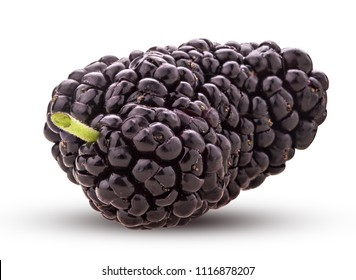 Mulberry berry isolated on white background. Clipping Path. Full depth of field.