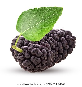 Mulberry berry with leaf isolated on white background. Clipping Path. Full depth of field.