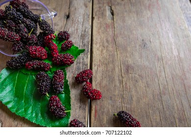 Mulberry fruit is now more famous as a health food. Fresh organic berries on a wooden background with copy space.