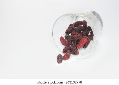 Mulberry and Glass on White Background