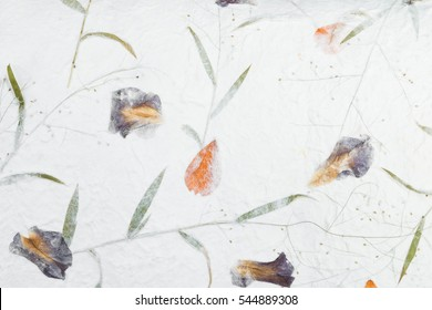 Mulberry paper with dry flower and leaf texture background