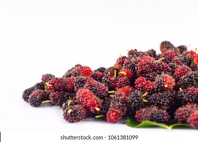 mulberry is a superfruit for health mulberry on white background healthy mulberry fruit food isolated