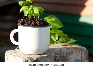 Mulberry in the white cup