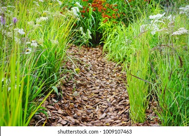 Mulched Backyard Garden Or Park Path Boarded By Grass And Flowers At Summertime