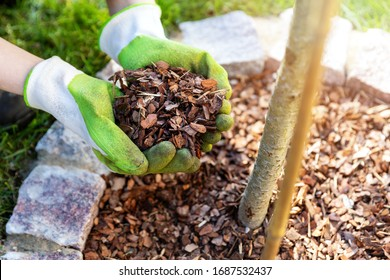 mulching flowerbed with pine tree bark mulch