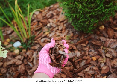 mulching garden beds with pine bark pieces