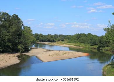 Mulde river in summer in Saxony-Anhalt / Germany
