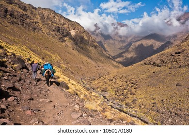 Mule riding on a track in Toubkal National Park at High Atlas mountains, Morocco, North Africa