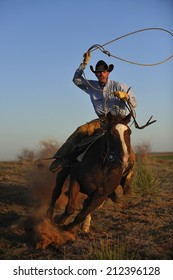 Muleshoe, Texas, USA, - March. 28. 2012: Cowboy chasing cow with rope