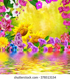 Multi colored beautiful flowers. Floral background.