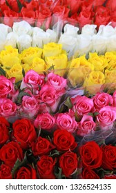 multi colored rose bunches standing side by side at a market
